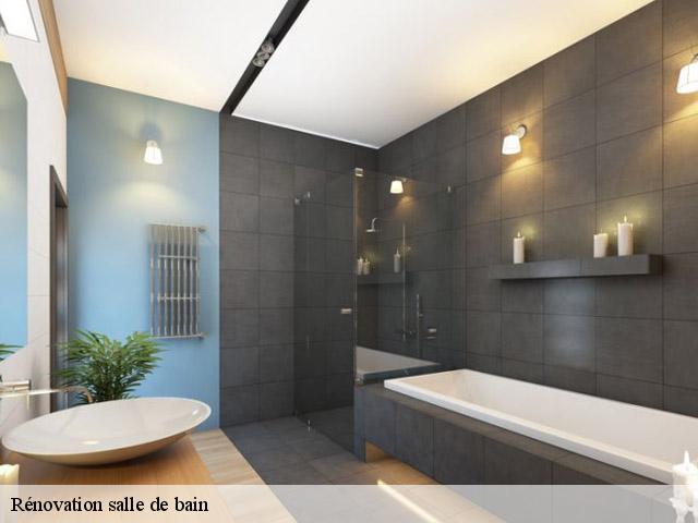 Entreprise Renovation Salle De Bain A Albiez Le Jeune Tel