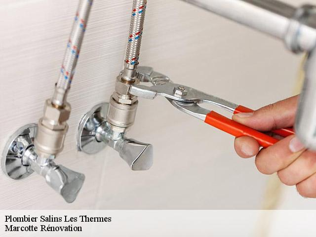 Plomberie  salins-les-thermes-73600
